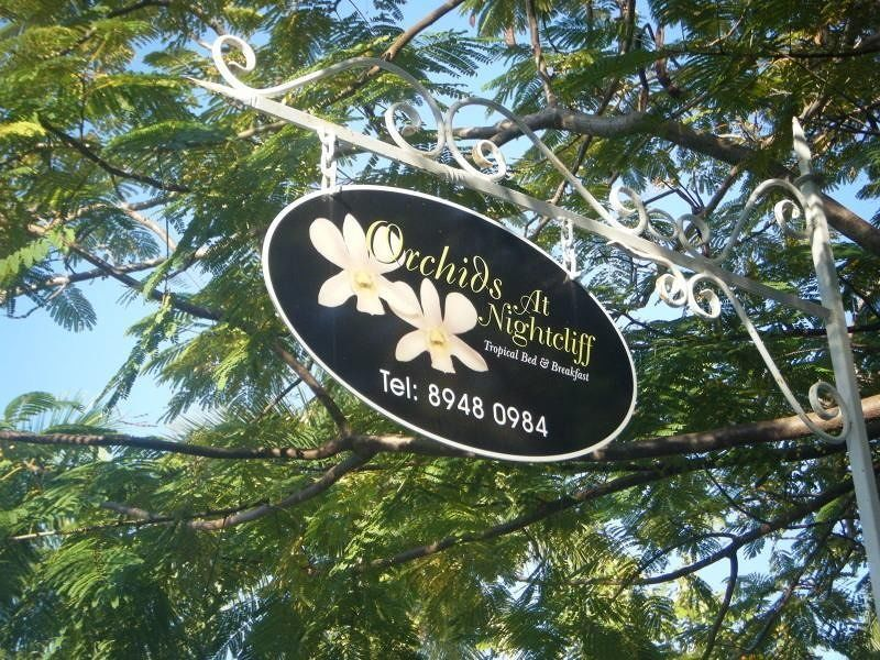 Orchids at Nightcliff - Darwin