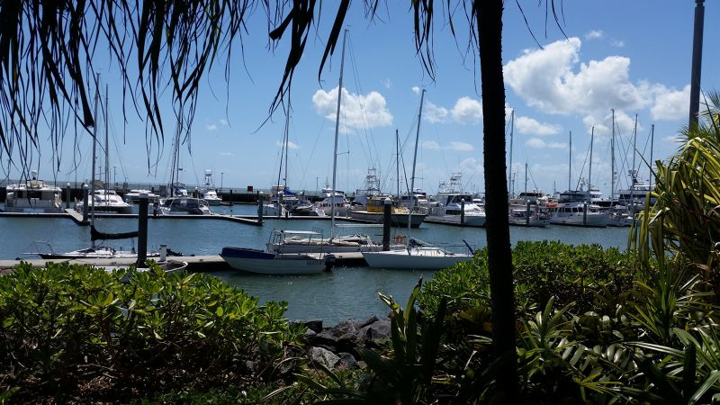 View of marina from Salthouse Cairns by aussirose - Cairns