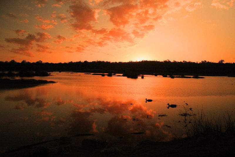 Yanchep National Park Sunset by aussirose - Yanchep