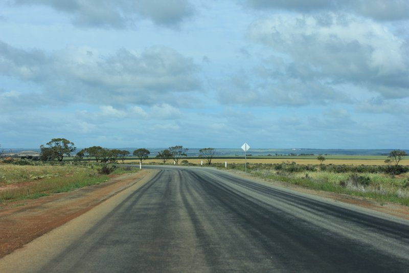 Coast Road to Lesueur National Park