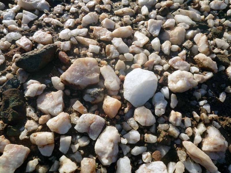 aussirose hunts for quartz crystal Yellowdine Lake - Yellowdine