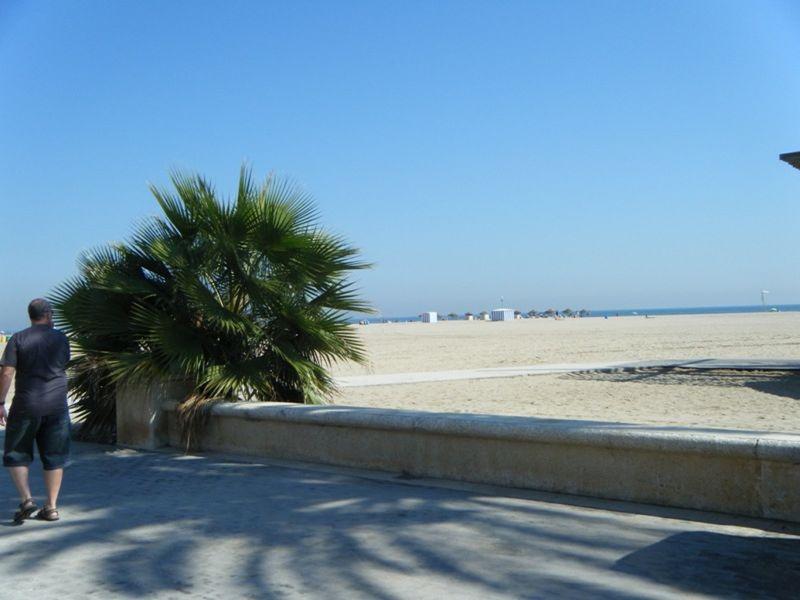 aussirose swims in Mediterranean Valencia - Valencia