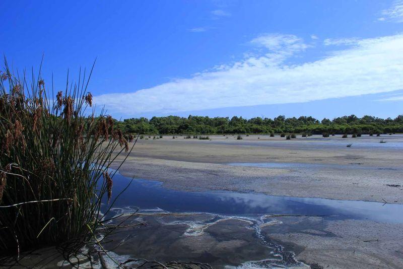 aussirose Yanchep National Park with Canon 60D