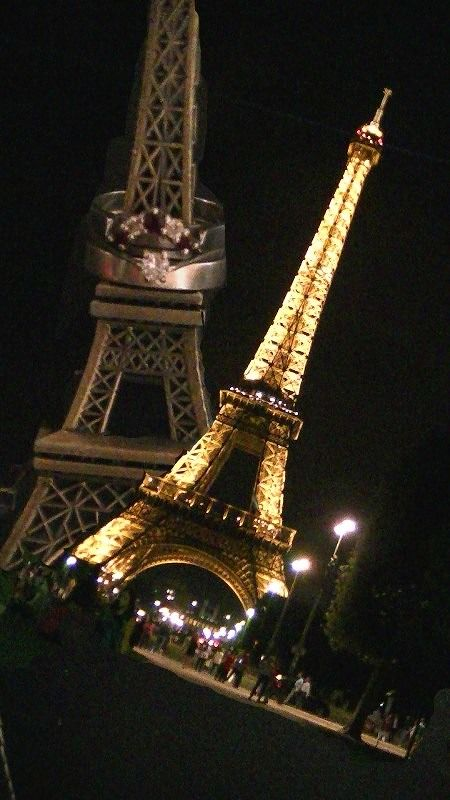 Paris - City of love by aussirose