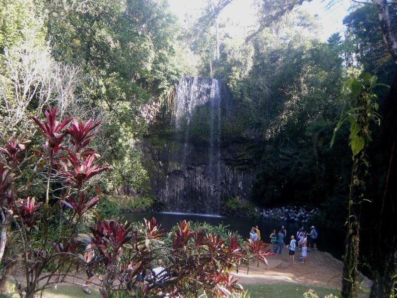 Millaa Millaa Falls by aussirose - Cairns