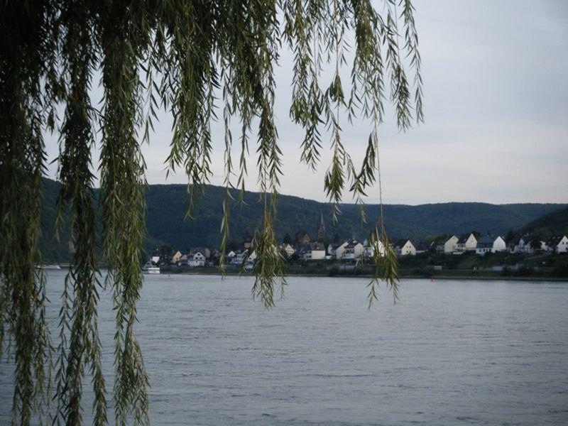 Braubach on the Rhine River - Braubach