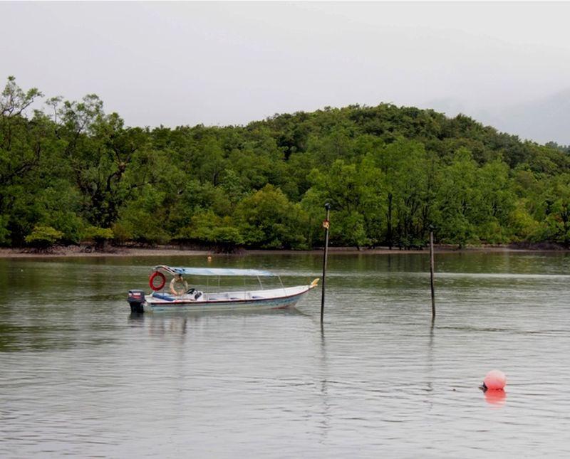 Mangrove swamp Tanjung Rhu by aussirose - Pulau Langkawi