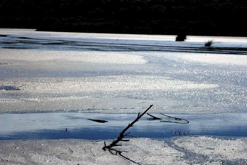 aussirose captures sun glistening on water Yanchep