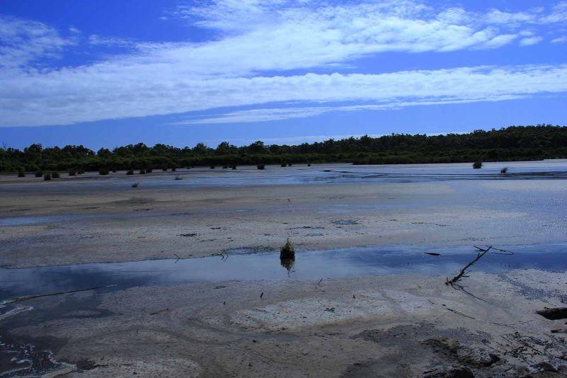 Yanchep National Park Lagoon rock chucking