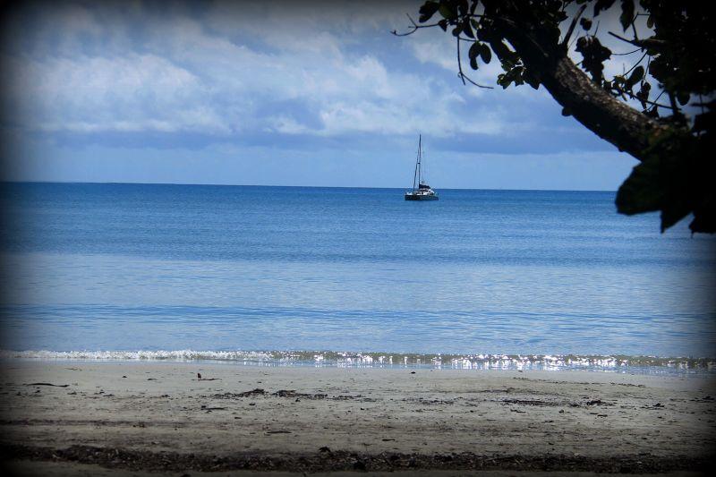 Cape Tribulation Thornton Beach QLD by aussirose - Cairns