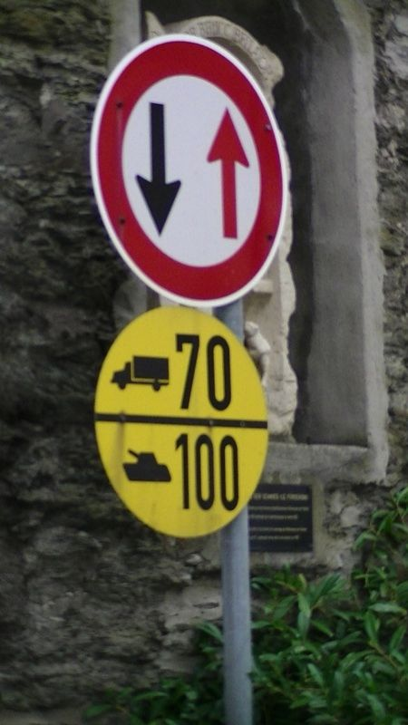 Tanks can speed in Braubach!! by aussirose - Braubach