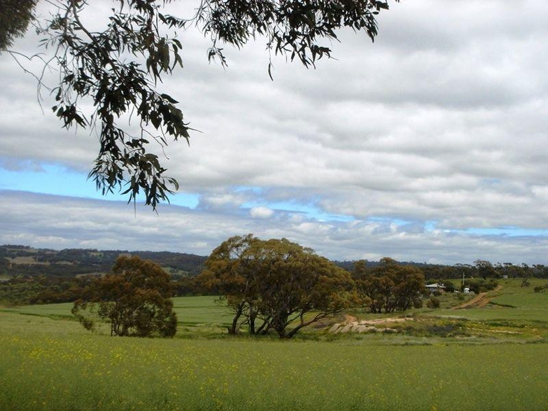 Countryside surrounding Toodyay by aussirose - Toodyay