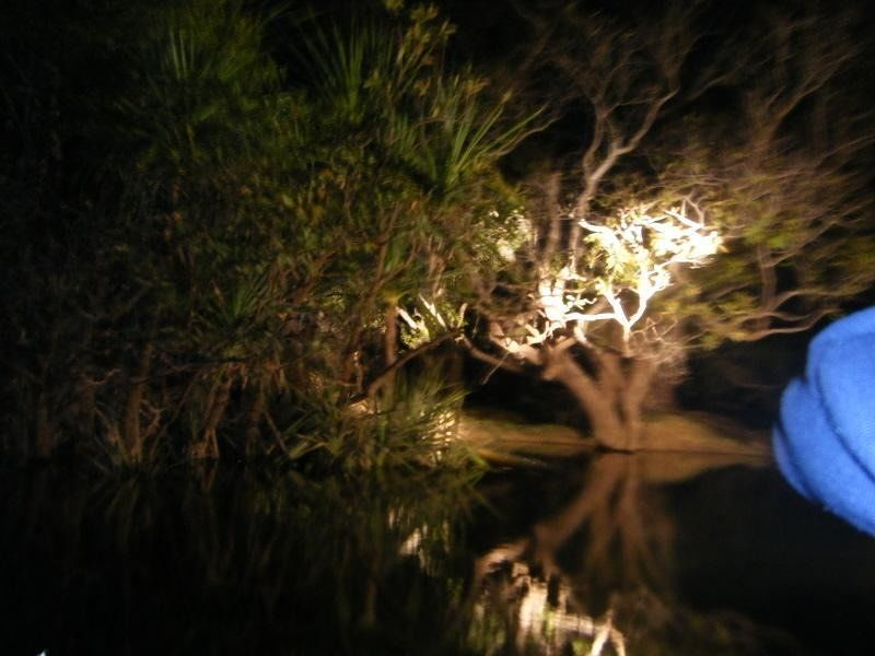 Djarradjin Billabong night cruise - Kakadu NT - Kakadu National Park