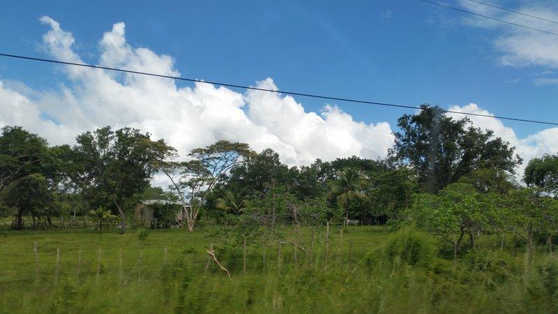 Belize Houses 5