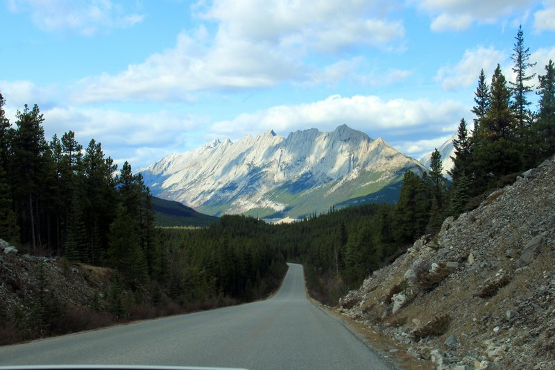 Driving Scenery 1