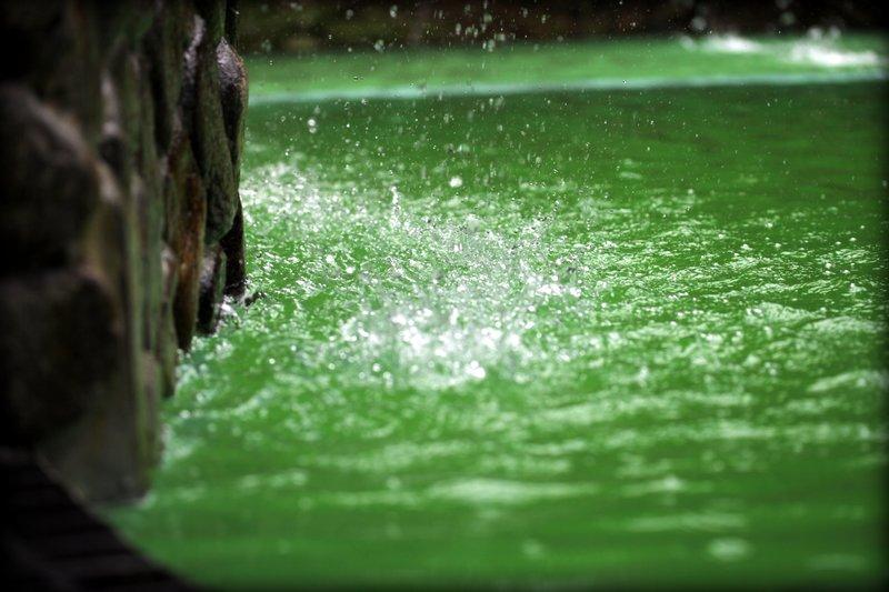Janda Baik Green Water
