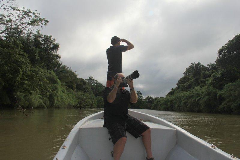 Jungle River 3