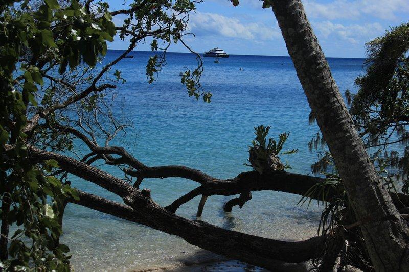 Fitzroy Island beach