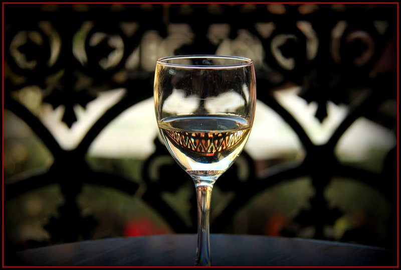 Wine glass with fence reflection 2