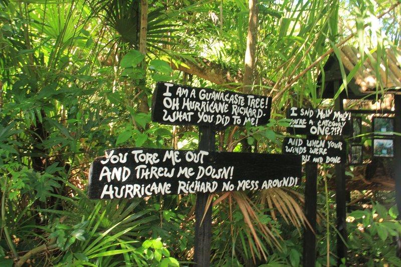 Belize - Zoo