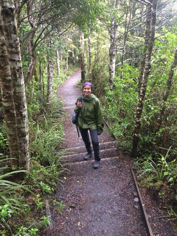 Hike down through rain forest