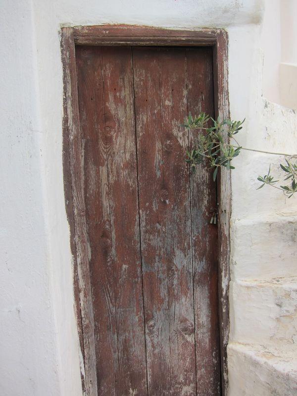 The Ancient Doors