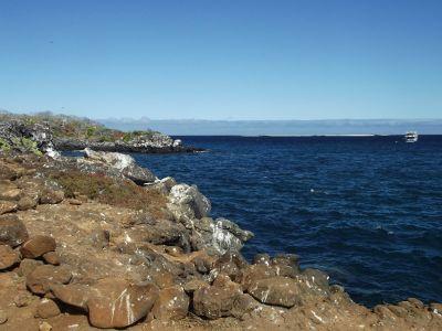 395305406454340-Shoreline_of..la_Seymour.jpg