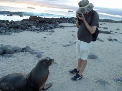 6444299-On_North_Seymour_Galapagos_Islands.jpg