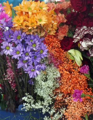 6515457-Flowers_for_sale_Cuenca.jpg