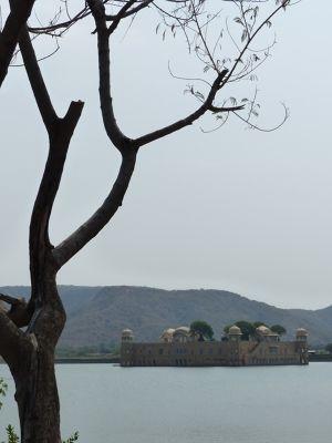 7530106-Jal_Mahal_Jaipur.jpg