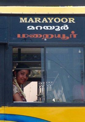 Bus passenger, Munnar