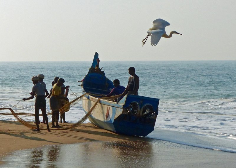 Fishing boat and fishermen, Chowara beach