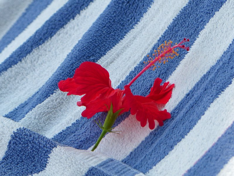 Pool towel, Travancore Heritage Hotel