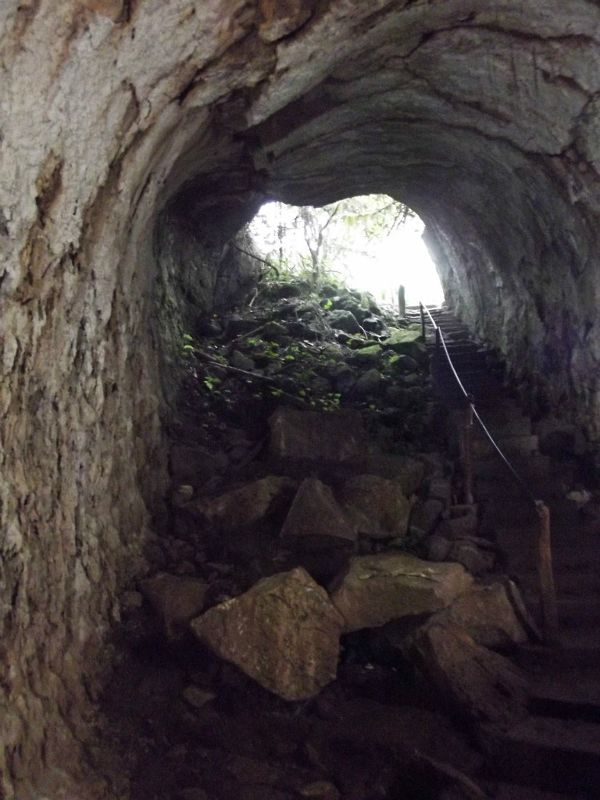 Entrance to the tunnel - Isla Santa Cruz