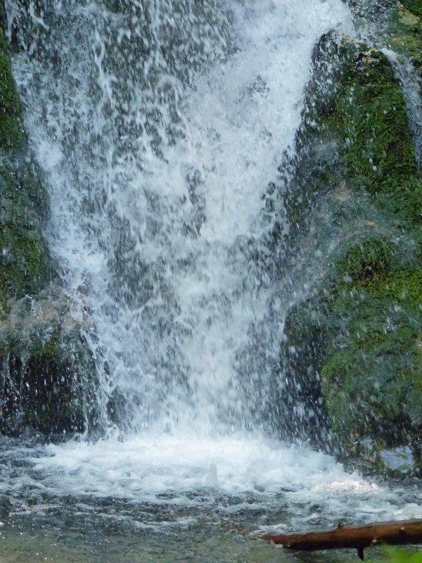 Madison Falls, Olympic NP