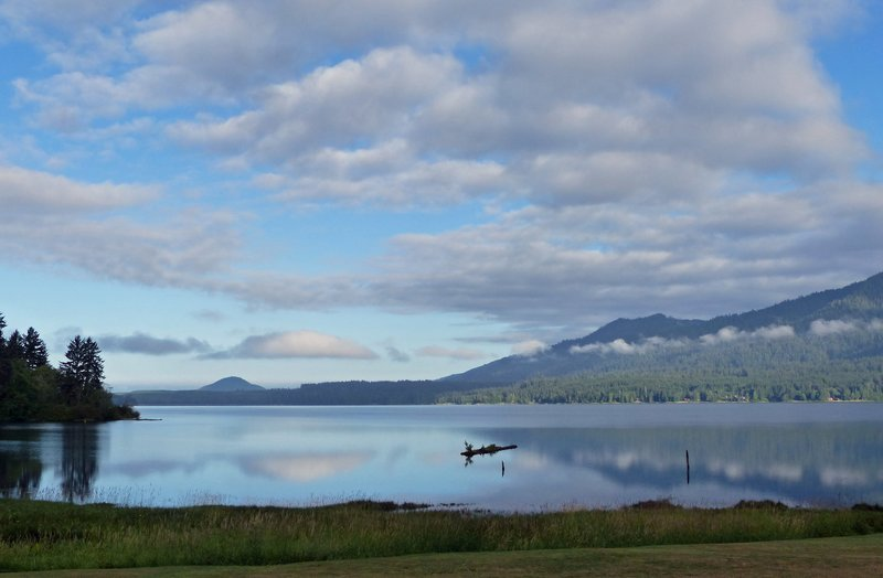 Lake Quinault early morning