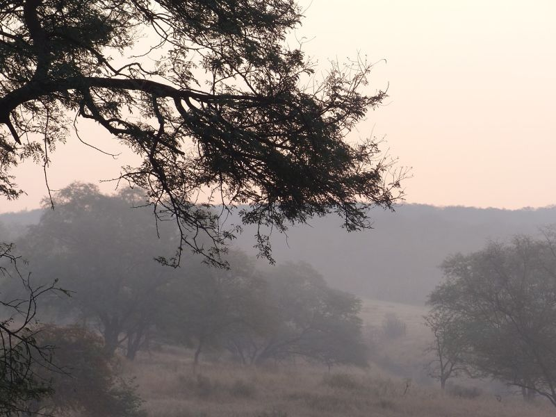Ranthambore: the park - Ranthambore National Park