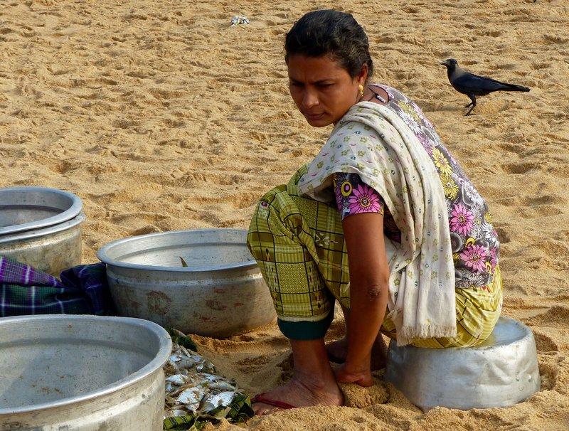 Sorting the catch, Chowara beach