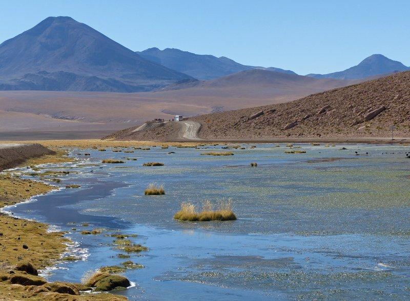 Putana wetlands
