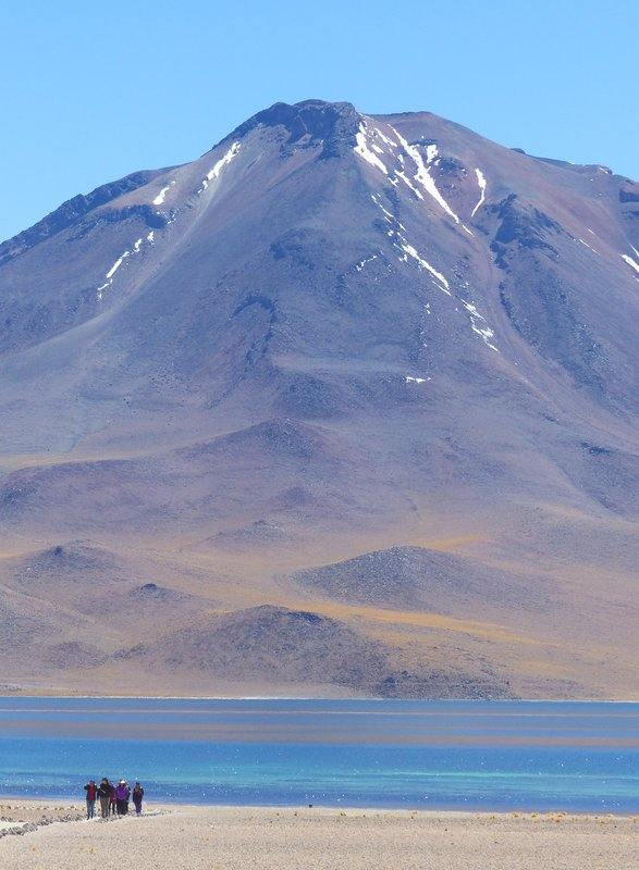 Laguna Miscanti, Atacama Desert