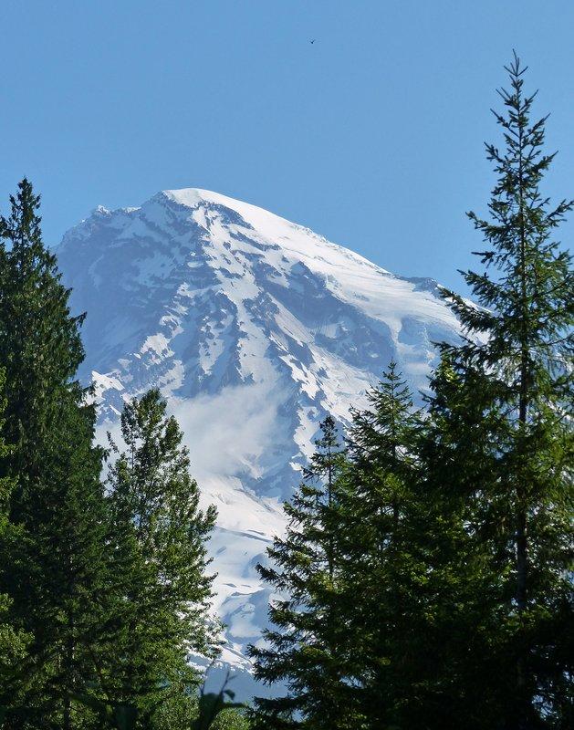 In Mount Rainier NP