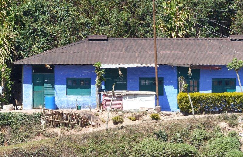 Tea pickers homes