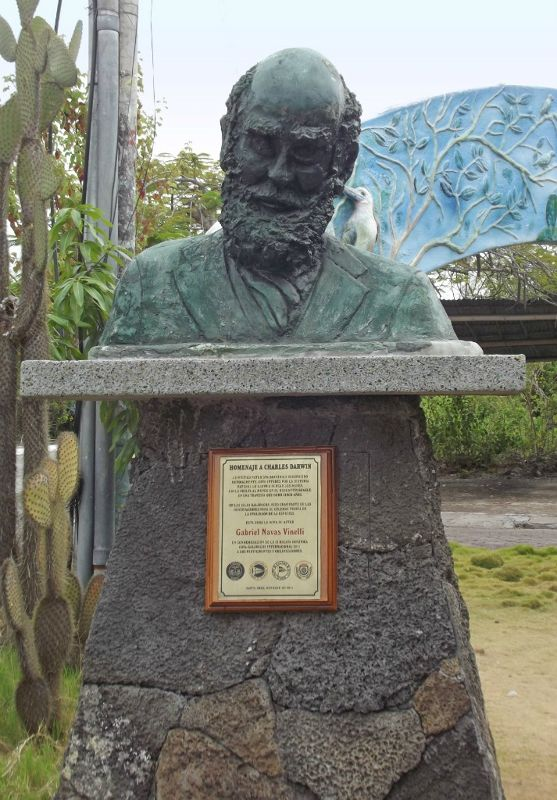 Bust of Darwin, Charles Darwin Research Centre - Puerto Ayora, Santa Cruz