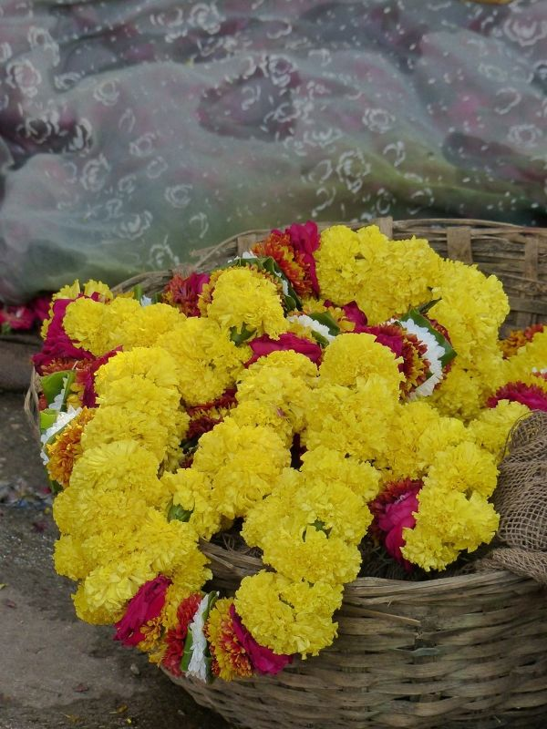 Flower garlands - Jaipur