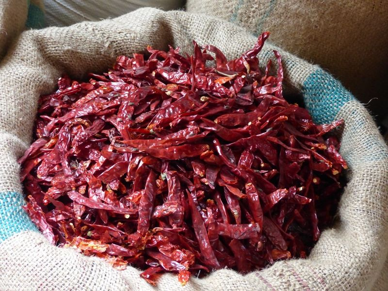 Chillies in the spice market - Jaipur