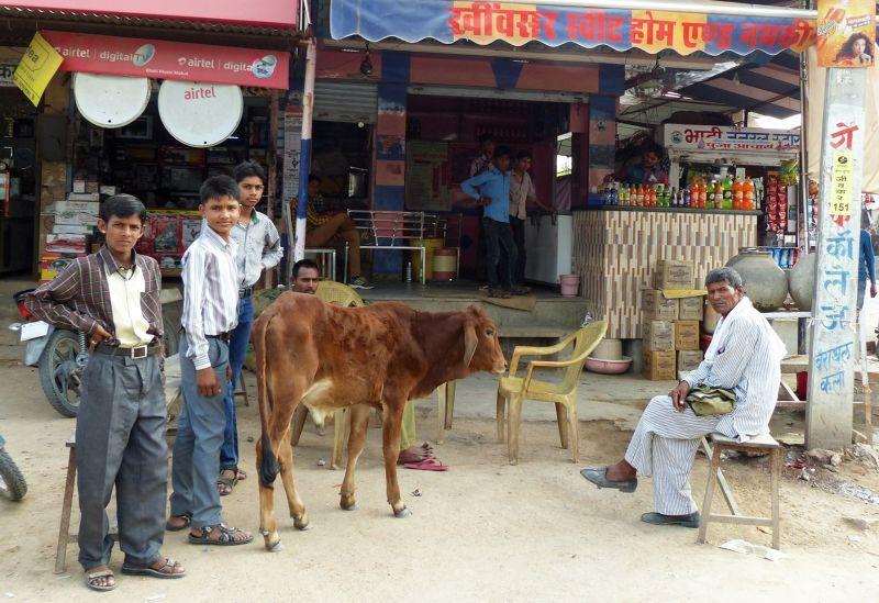 Local cafe - Khimsar