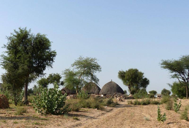 large_7536733-Approaching_the_home_Jaisalmer.jpg