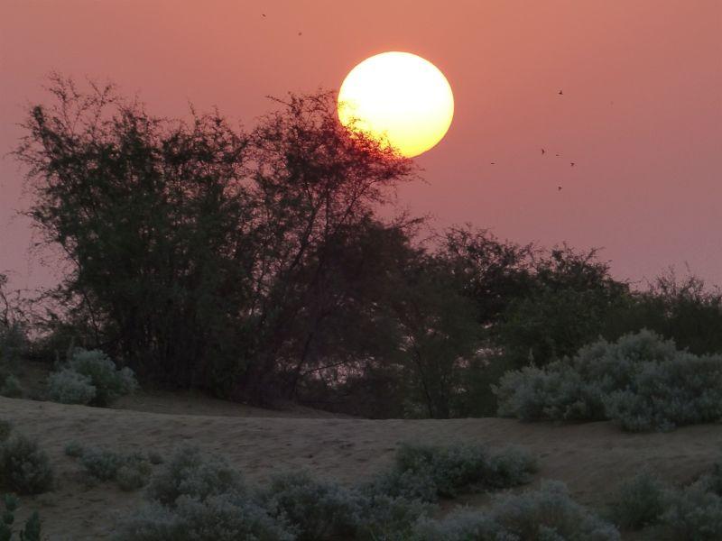 Desert sunrise - Dechu