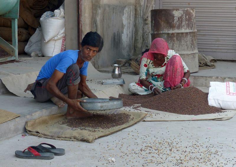 Spice shop - Jodhpur