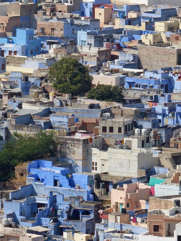 The Blue City, seen from Mehrangarh Fort - Jodhpur